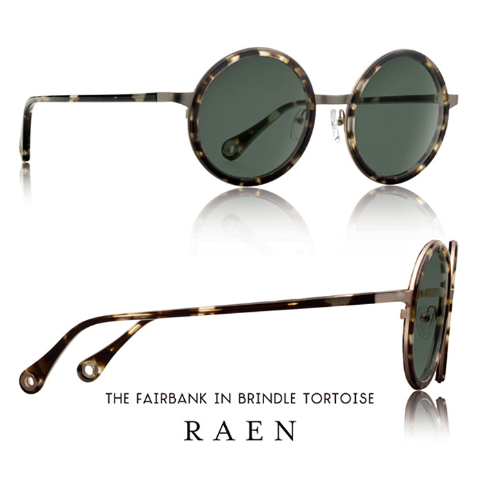The F A I R B A N K in Brindle Tortoise