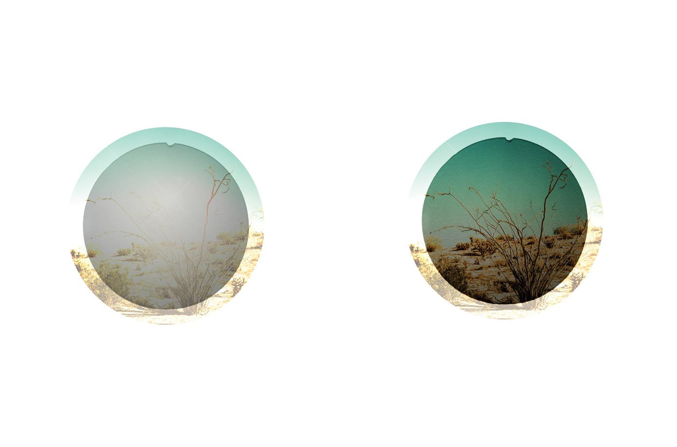 What Are Polarized Sunglass Lenses?