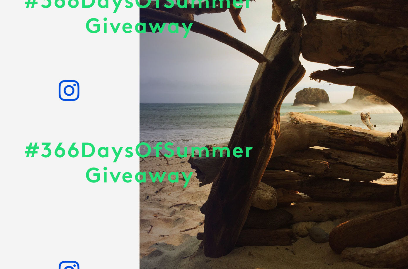 366 Days of Summer Week 32 Winners