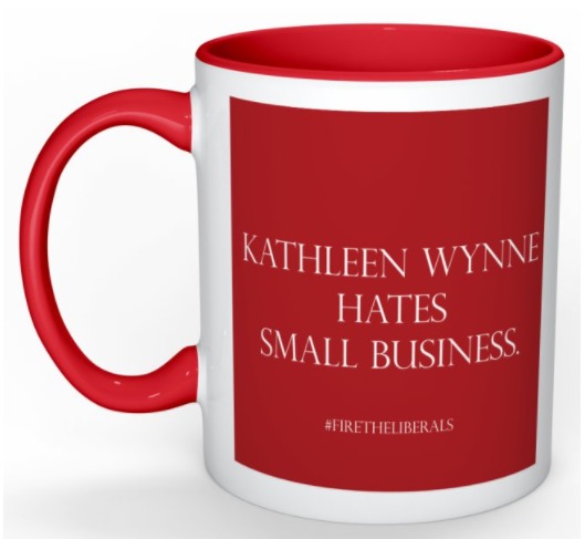 Why Kathleen Wynne and the liberals hate small business in Ontario