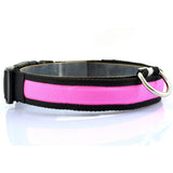 Pet Dog Collar Night Safety Anti-lost Flashing Glow Collars 7 colors S M L XL Size for pet dogs
