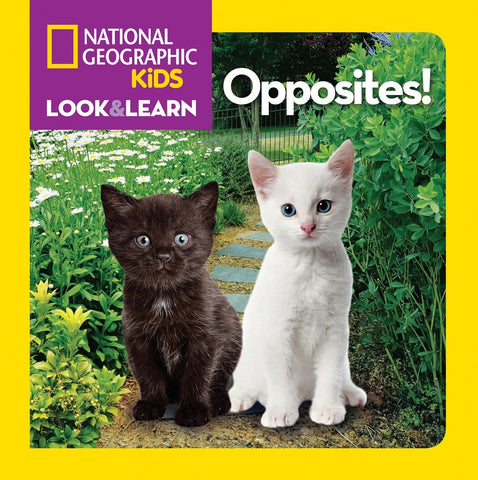 Libro LOOK & LEARN: OPPOSITES!