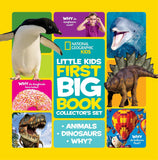 libro BIG BOOK OF SET