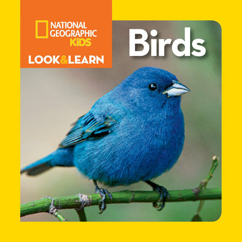 Libro LOOK & LEARN: BIRDS