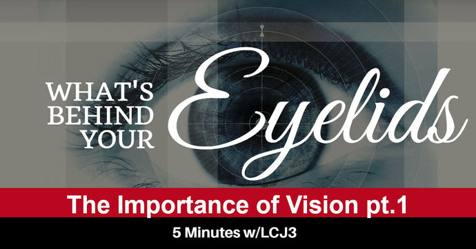 What Behind Your Eyelids - The Importance of Vision pt.1