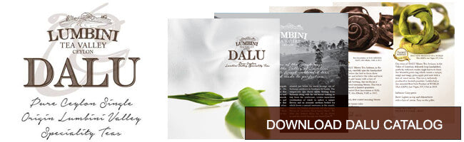 Download Dalu Catalog