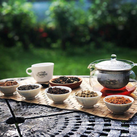 Tea Tasting At Your Comfort - Australia > Gold Coast
