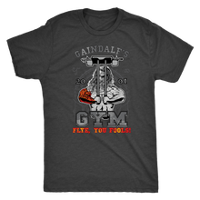 "teelaunch T-shirt Next Level Mens Triblend / Vintage Black / S Gaindalf's Gym (Arms Closed) - ""Flye, You Fools!"" 