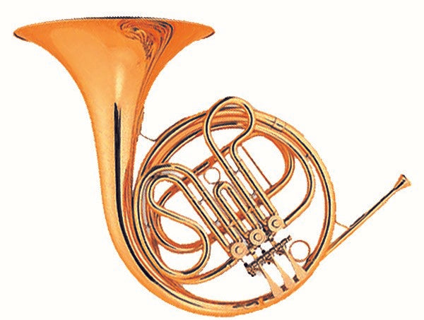 Coley Musical C-6441L Student French Horn