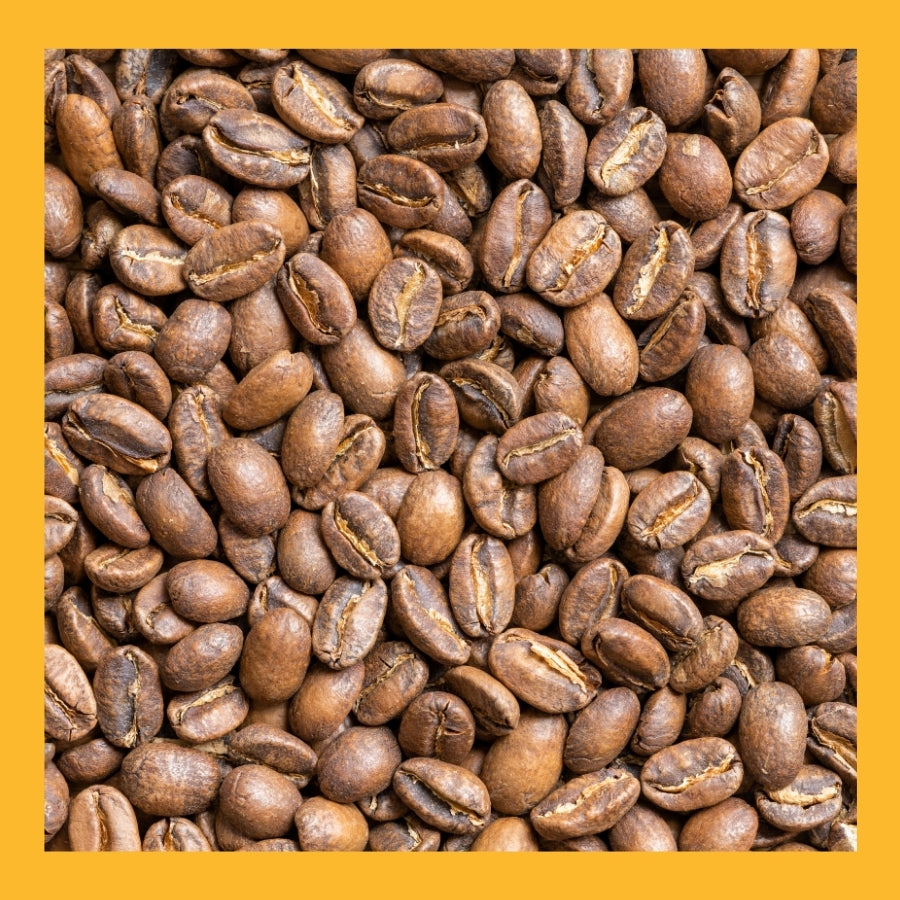 Light Roasted Mexican Altura Pluma  5 lb. bag