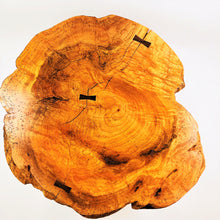 Live Edge Red Oak Burl Coffe Table with White Pine Log Legs