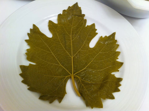 Grape Leaves - أوراق عنب
