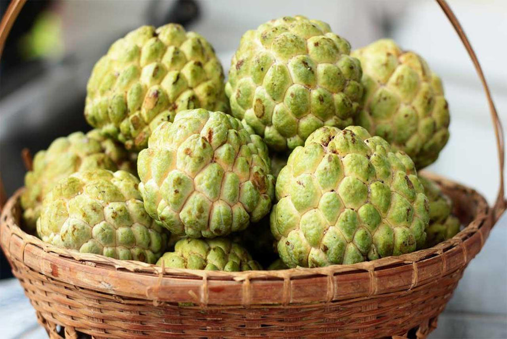 Custard Apple 500gm - MarkeetEx