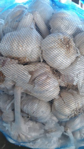 Garlic 5Kg bag - MarkeetEx