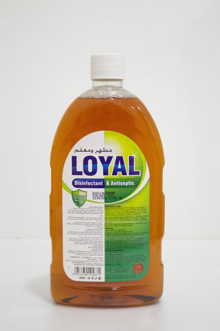 Loyal Disinfectant & Antiseptic 750ml - MarkeetEx