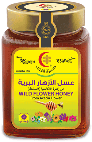 Mujeza Honey Wild Flower 500gm