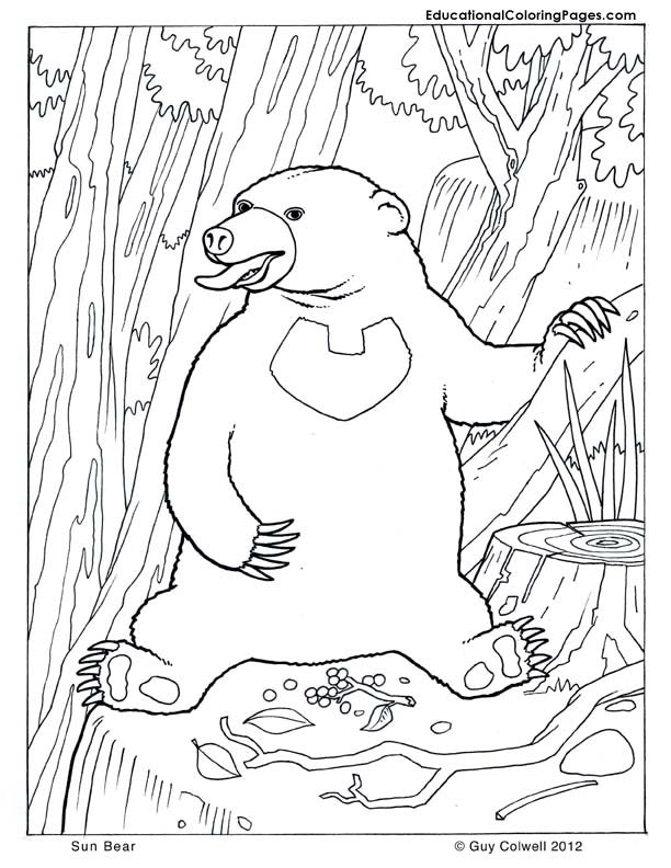 Mammals Coloring Book 3 - Fashionura