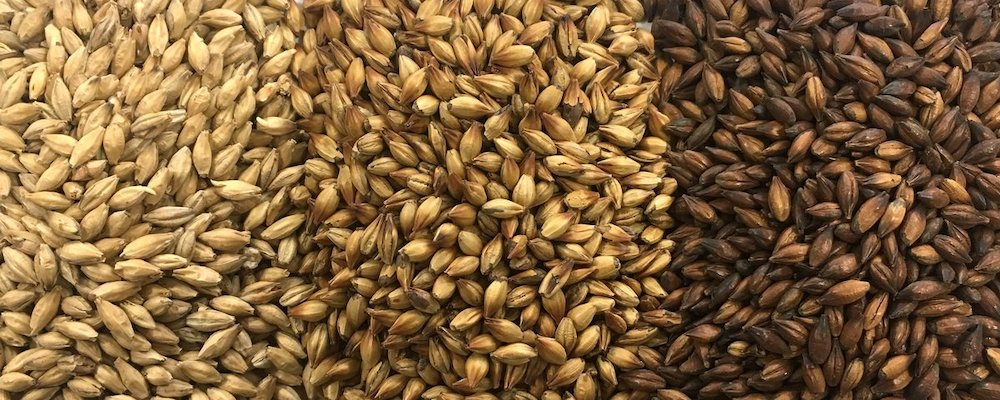All Things Fermented Home Brew Malt Grain