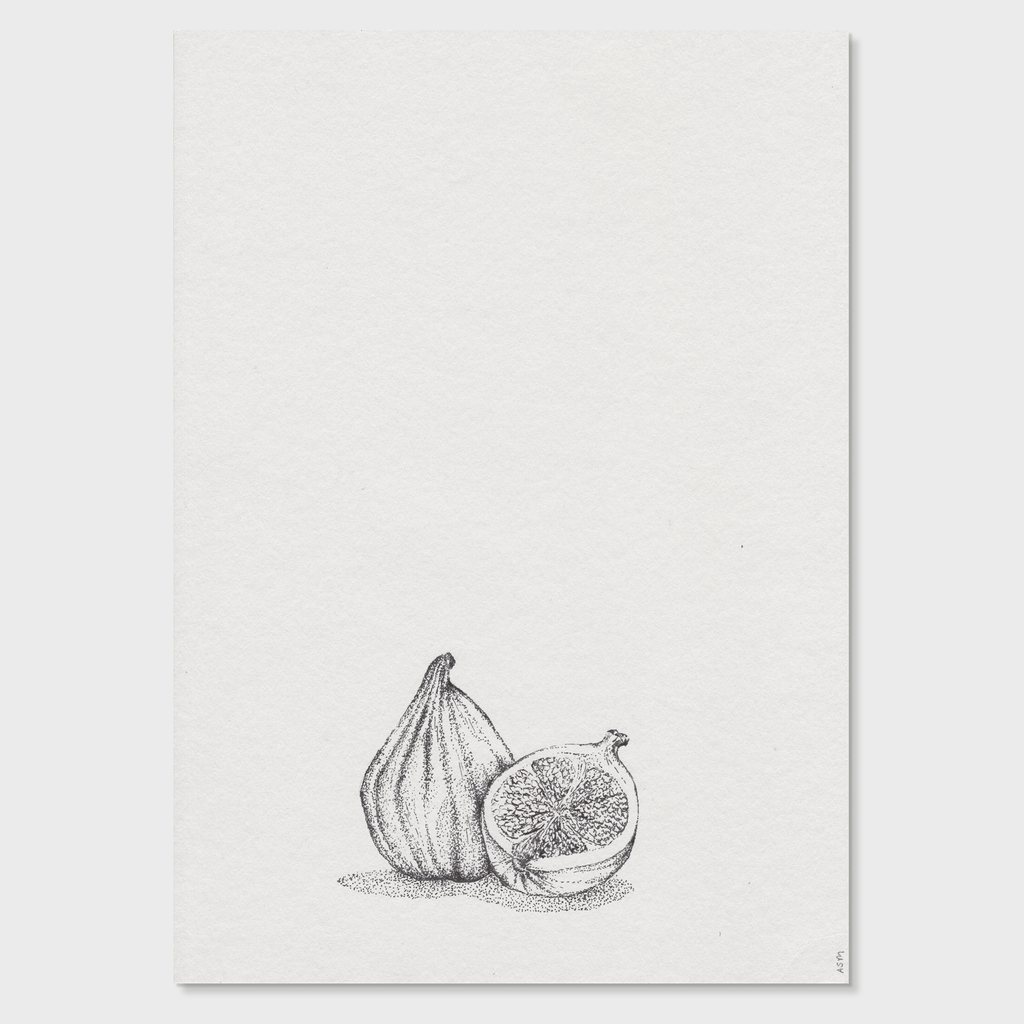 Antonia Sebag-Montefiore Hand-Drawn Fig Illustration Print | Vespiary