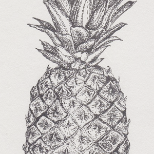 Hand-Drawn Pineapple Illustration Print