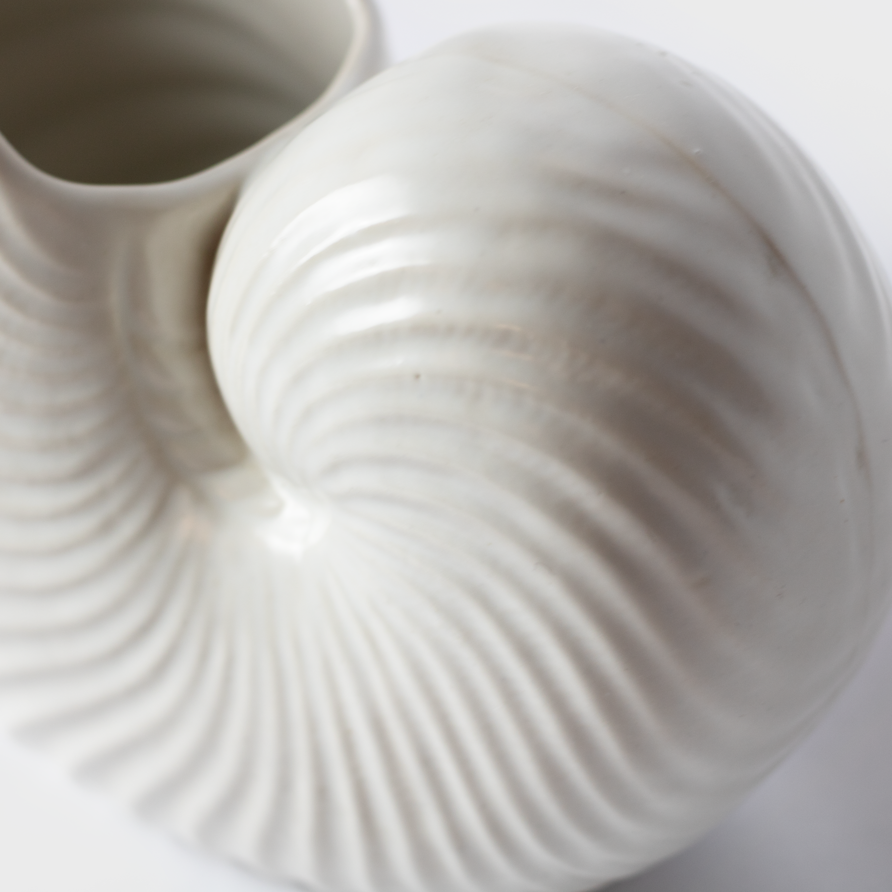 White Ceramic Shell Pot