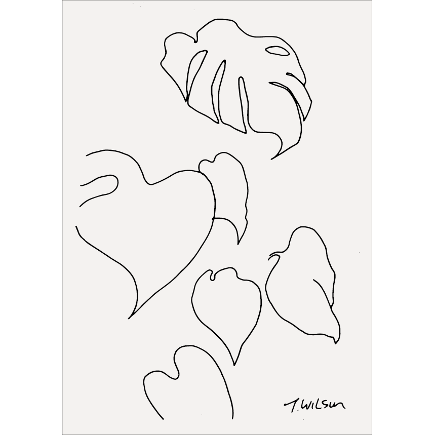 James Wilson Monstera Pt.01 Line Drawing Print A4