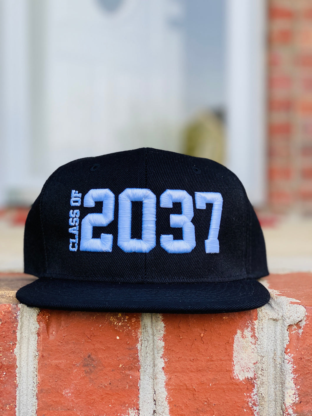 ❌ADULT❌CLASS OF HAT 2037