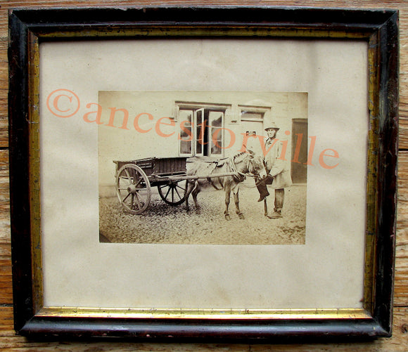 1870's William Wyndham Baring Esq-Donkey Cart Photo Evershot Dorset UK
