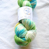 Sweet Skeins - Twist Merino Sock