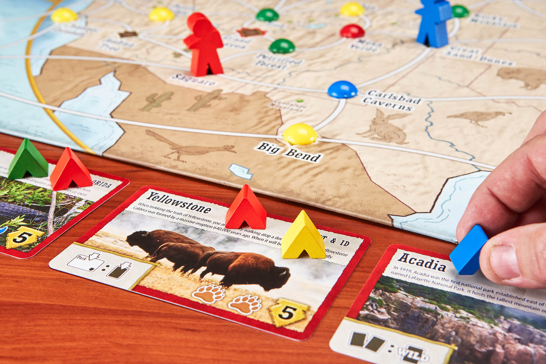 Game cards for Trekking The National Parks board game