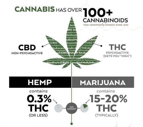 cannabis-extracts