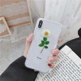 Ladycases - Phone Case Expert - Real Flowers Dried Flowers Clear Phone Case Back Cover for iPhone SE/11 Pro Max/11 Pro/11/XS Max/XR/XS/X/8 Plus/8/7 Plus/7/6s Plus/6s/6 Plus/6