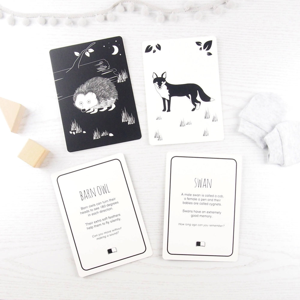 Baby flash cards - British animals