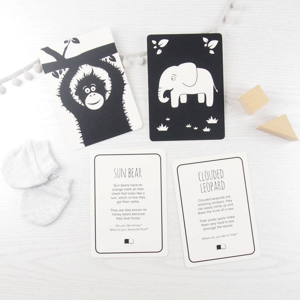 Baby flash cards - Southeast Asia animals