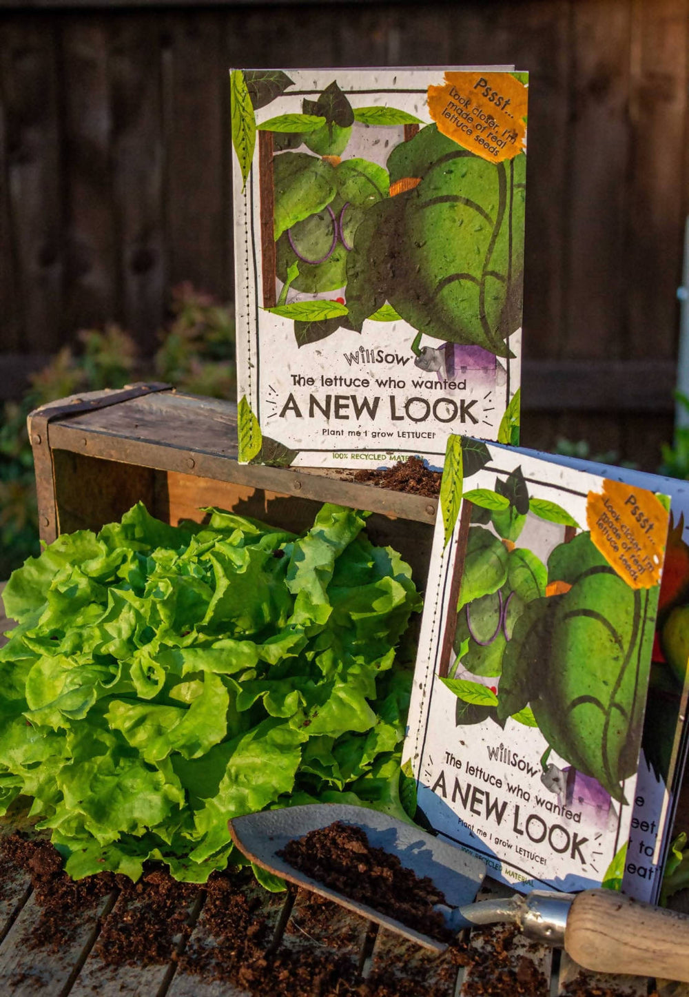 The Lettuce Who Wanted A New Look