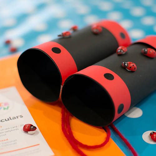 Ladybird Binoculars Children's Craft Kit
