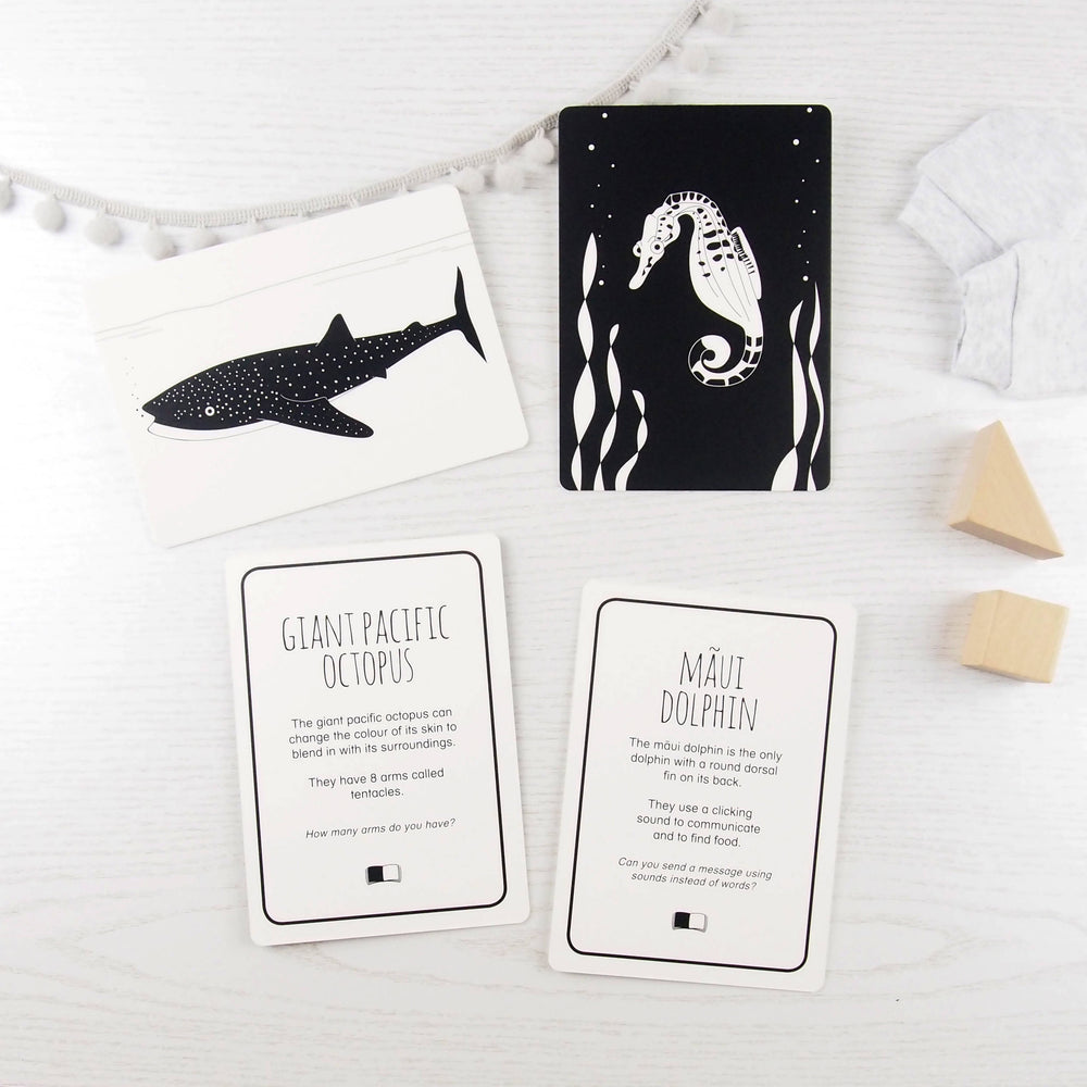 Baby flash cards - Ocean animals