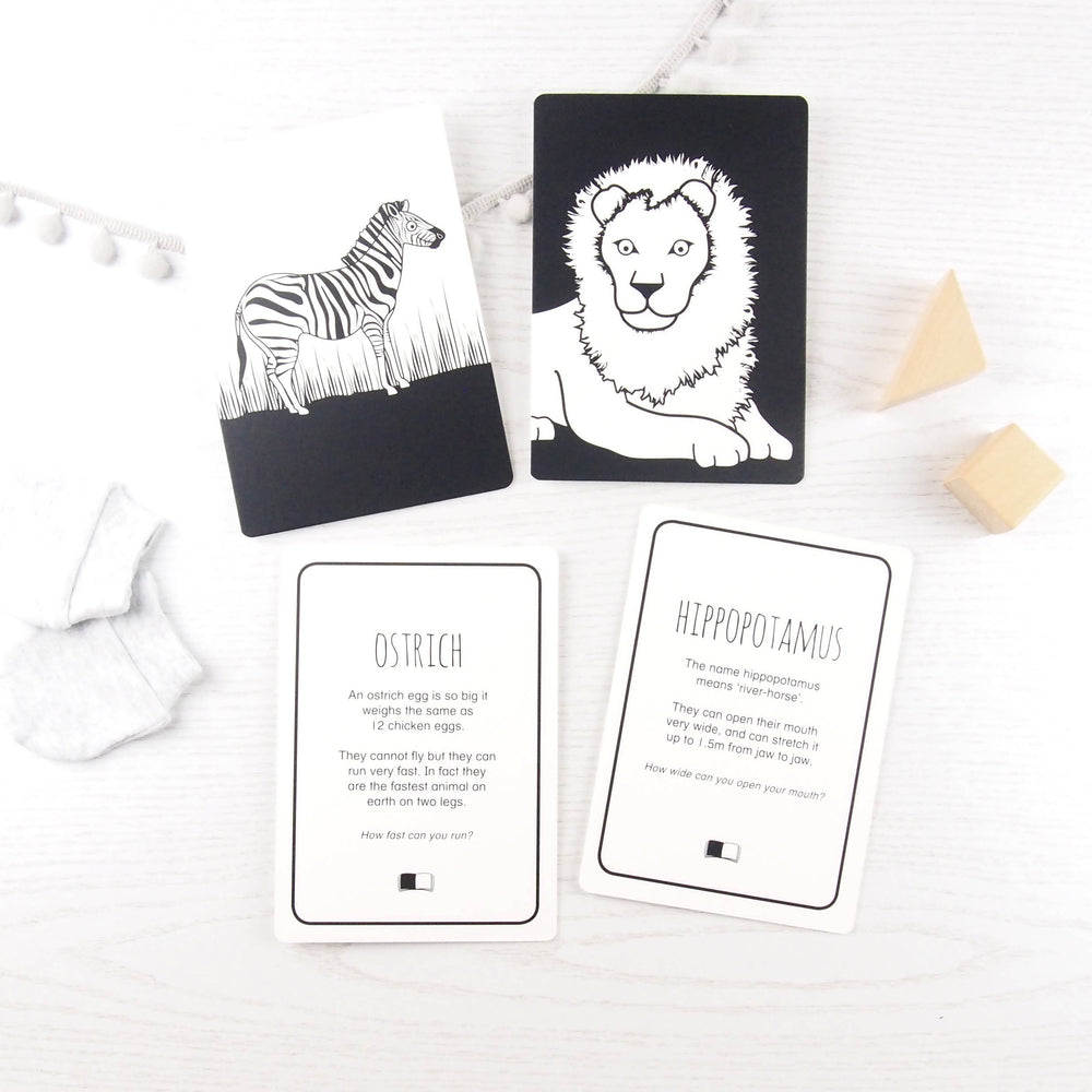 Set of 5 interactive baby flash cards