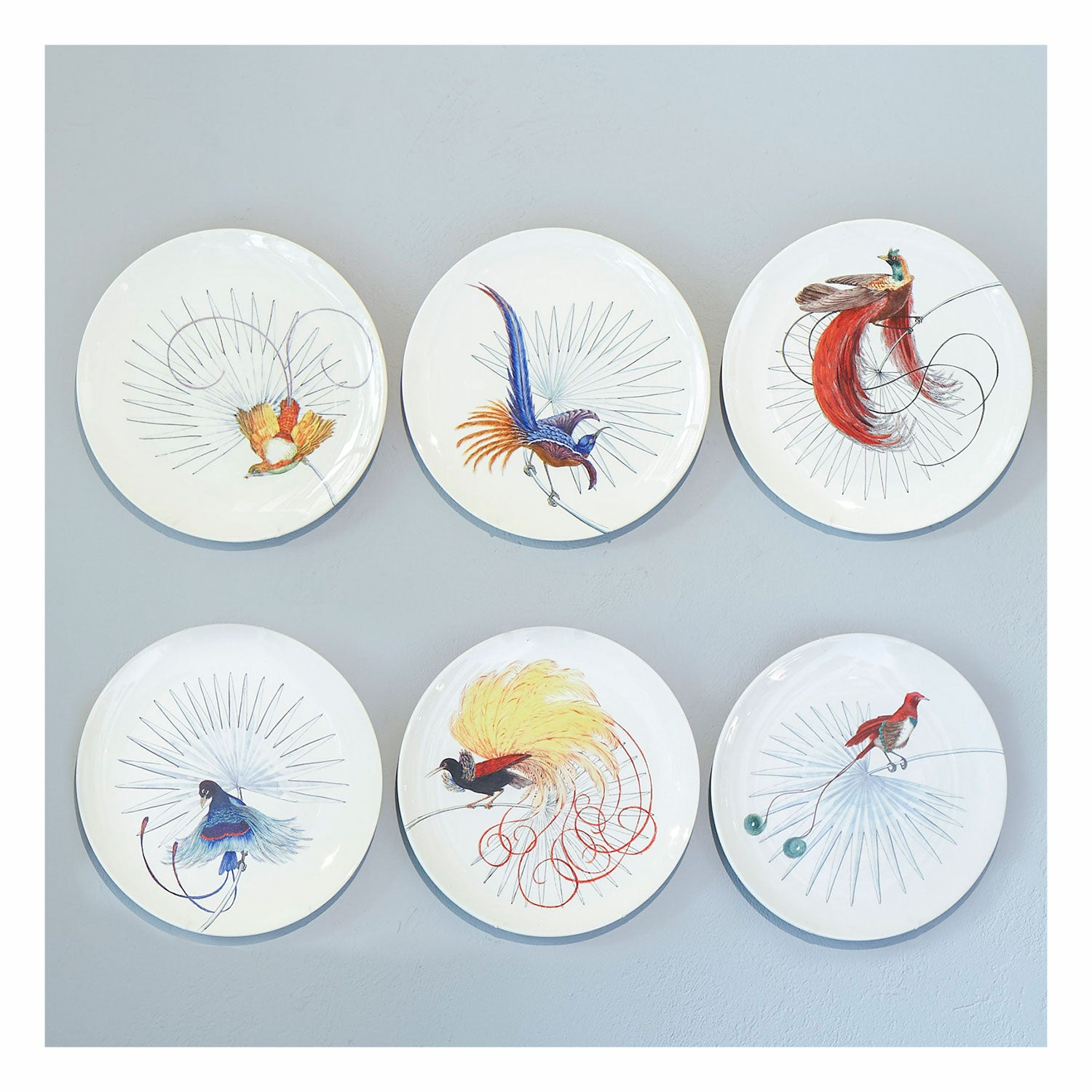 Birds of Paradise White 2 Dinner Plate (25cm)
