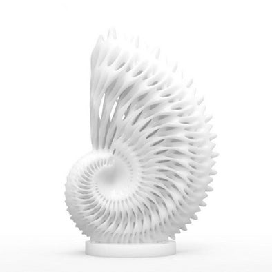3D Printed Nautilus Digital Sculpture