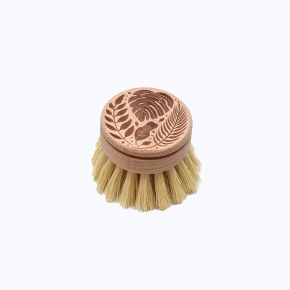 Eco Brush Refill for Long Handle Brush