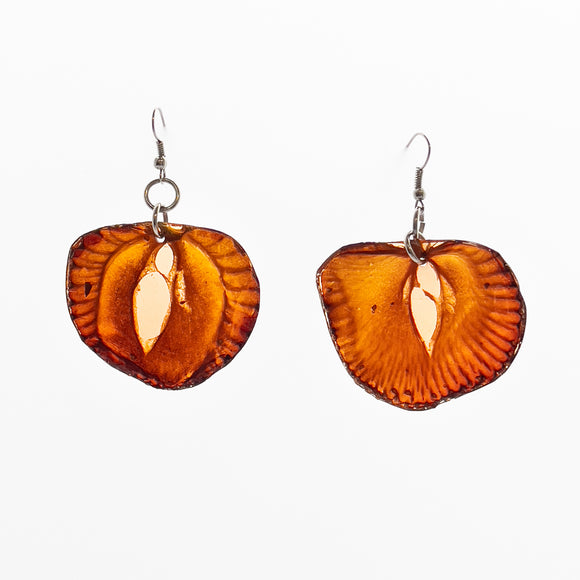 Fruit Slice Earrings - Strawberry