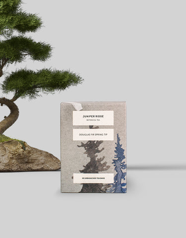 Juniper Ridge - Botanical Tea, Douglas Fir Spring Tip