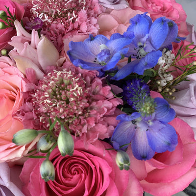 blue flowers, pink roses
