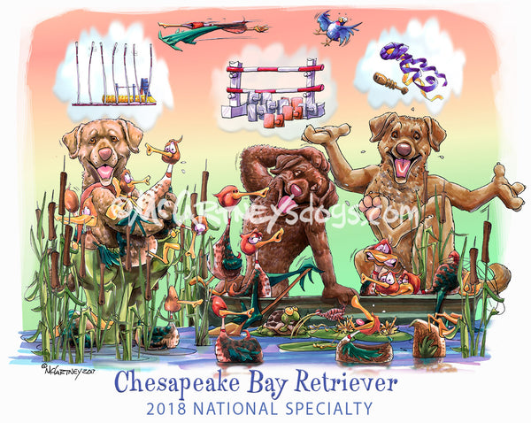 chesapeake bay retriever national specialty