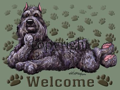 Bouvier Des Flandres - Welcome - Mat