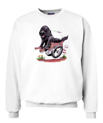 Newfoundland - In Cart - Caricature - Sweatshirt