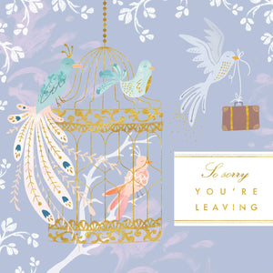 Leaving Bird Cage