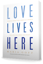 Love Lives Here Softcover Book