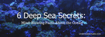 6 Deep Sea Secrets: Mind-Blowing Facts About the Ocean